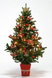 Выбираем подарки и защищаем организм в праздники!