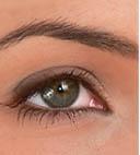 Опыт применения средства «Рициниол базовый» в практике офтальмолога
