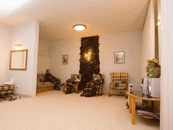 Релаксационная шунгитовая комната