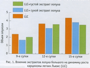 Влияние экстрактов лопуха большого на динамику роста карциномы легких Льюис