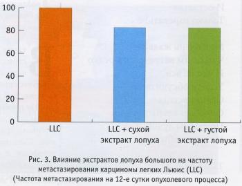 Влияние экстрактов лопуха большого на частоту метастазирования карциномы легких Льюис
