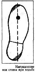 Направление оси стопы при ходьбе
