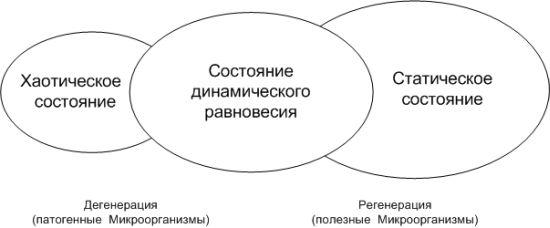 Различные состояния биосферы