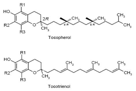 α-токоферол и α-токотриенол