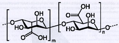 Альгиновая кислота морских водорослей