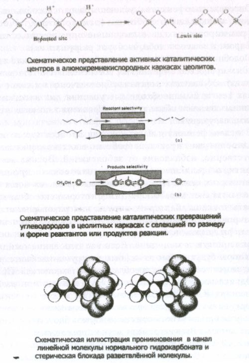 Основные механизмы катализа модифицированных стандартизованных природных цеолитов