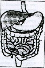 Применение БАД к пище типа «Литовит» в гастроэнтэропогии