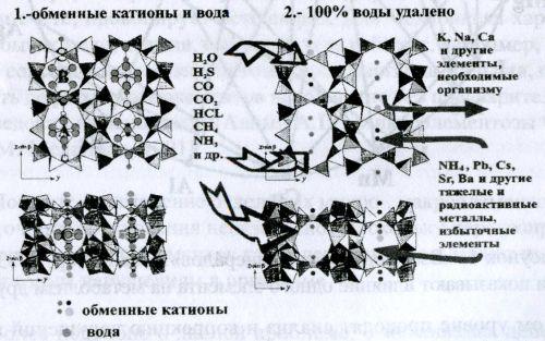 Механизм реакций ионного обмена на цеолите