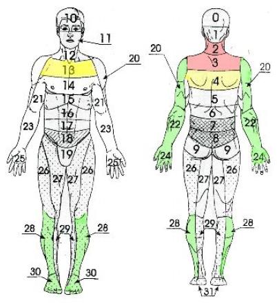 Травмы и переломы верхних конечностей (рис. 14)