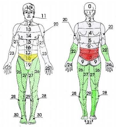 Травмы и переломы нижних конечностей (рис. 15)