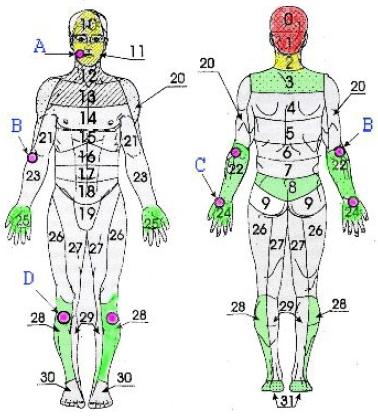 Головные боли, невралгия тройничного и неврит лицевого нервов, лицевые симпаталгии, нарушения слуха, зрения, зубная боль, простудные заболевания (рис. 3).