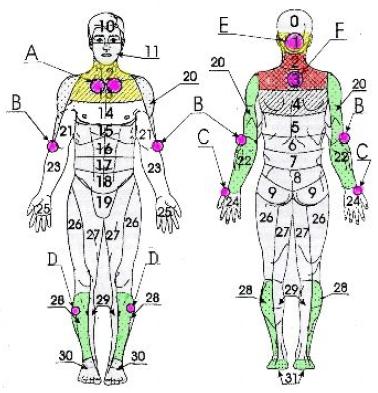 Фарингиты, ларингиты, ангины, простудные заболевания, болезни бронхов и легких, неврологические синдромы остеохондроза шейного и грудного отделов позвоночника, шейно-плечевая плексопатия, неврозы, артриты, невриты, невралгии верхних конечностей (рис. 4).