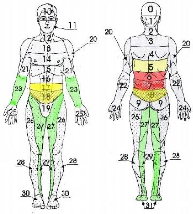 Язвенная болезнь желудка и 12-перстной кишки, заболевания тонкого кишечника и почек, почечная колика, ожирение (рис. 8).