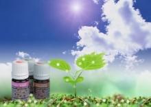 Противопоказания и предупреждения ароматерапии