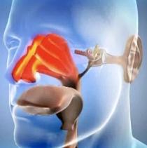 Ароматерапия при пневмонии, ларингите, отите