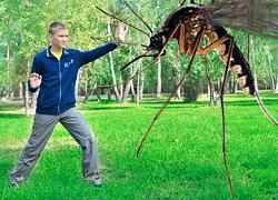 Эплан - снятие зуда кожи после укуса комаров, ос, пчел.